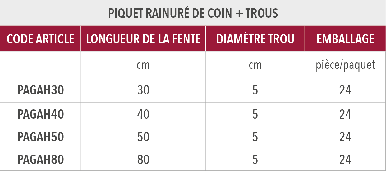 Piquet rainuré de coin + trous